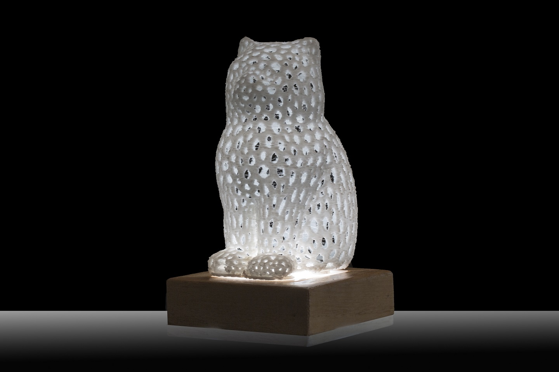 Arte e Luce LED attraverso Modello 3D - ARTELUX GATTO BIANCO