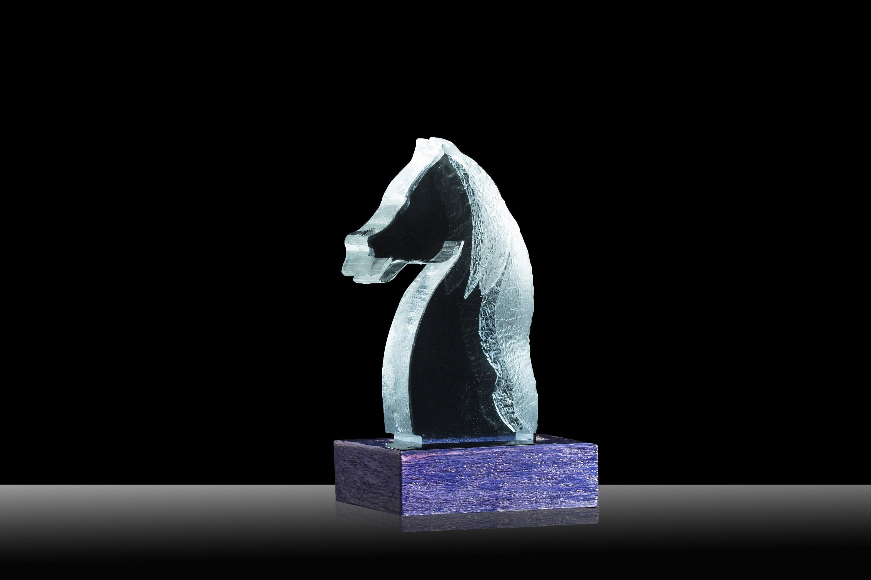 Arte e Luce LED attraverso Plexiglass - ARTELUX CAVALLINO
